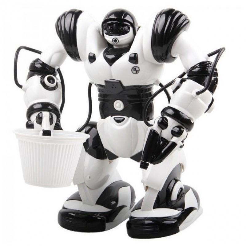 Робот на р/у - Robowisdom (арт. TT313)